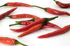 Handful of red hot Thai chili papers. On white background Royalty Free Stock Image