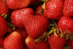 A handful of red strawberries Royalty Free Stock Photos