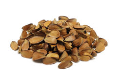 A handful of roasted beech nuts Royalty Free Stock Photography