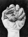 Handful of sea shells. Hand drawn pencil sketch of a hand holding three different sea shells in a grasp Stock Photos