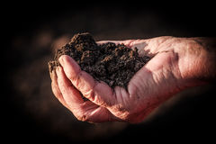 A handful of soil. Soil in old female hand Stock Photo