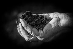 A handful of soil. Soil in old female hand,black and white photo Royalty Free Stock Photos