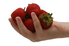A handful of Strawberries Royalty Free Stock Photo