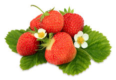 Handful of a strawberry Royalty Free Stock Image