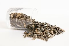 Handful of sunflower seeds Stock Photos