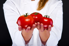 Handful of Tomato Royalty Free Stock Photo