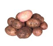 Handful of young potato. Stock Photo