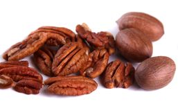 Handfull of Pecans Stock Photos