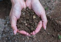 Handfull Rich Soil royaltyfria bilder