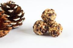 Handgemachte Bälle des strengen Vegetariers gemacht von der Kokosnuss, von den Moosbeeren und von den Nüssen stockfoto