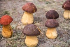 Handgemachte hölzerne Pilze Lizenzfreies Stockfoto