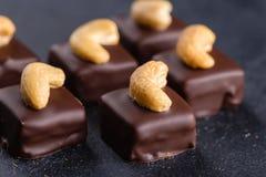 Handgemachte Schokoladenbonbons mit Acajoubaum Stockbild