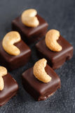 Handgemachte Schokoladenbonbons mit Acajoubaum Stockbilder