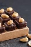 Handgemachte Schokoladenbonbons mit Acajoubaum Lizenzfreies Stockbild