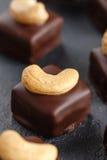 Handgemachte Schokoladenbonbons mit Acajoubaum Stockfotografie