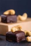Handgemachte Schokoladenbonbons mit Acajoubaum Lizenzfreie Stockbilder