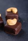 Handgemachte Schokoladenbonbons mit Acajoubaum Stockfotos