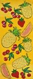 Handgemachte Stickerei-und Kreuzstich-Früchte Lizenzfreie Stockfotografie