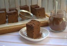 Handgemachter Schokoladenkuchen mit Kakao Lizenzfreies Stockbild