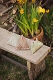 Handgemachtes Huhn Ostern mit Narzisse im Topf arbeiten im Frühjahr im Garten Stockfoto