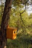 Handgemachtes Vogelhaus, das an einem Baumkabel hängt Lizenzfreies Stockfoto