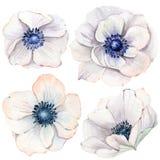 Handgemalte Aquarellblumen eingestellt in Weinleseart Stockfoto