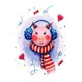 Handgemalte Aquarellillustration eines Schweinmädchens das tragender Schal mit blauen Pelzkopfhörern der roten und weißen Streife lizenzfreie stockfotos