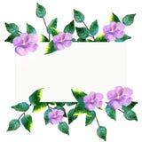 Handgemalter Kranz des Aquarells mit grünen Blättern, purpurroten Blumen und Niederlassungen Stockfotos