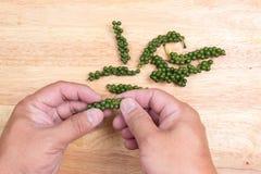 Handgestreifter frischer grüner Paprika Lizenzfreies Stockbild