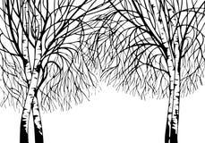 Handgezogene Baum-Birkenschattenbilder stockfotografie