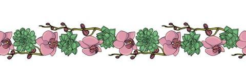 Handgezogene Gekritzelart saftig und Orchideenblumen nahtlose Bürste, endlose Grenze vektor abbildung