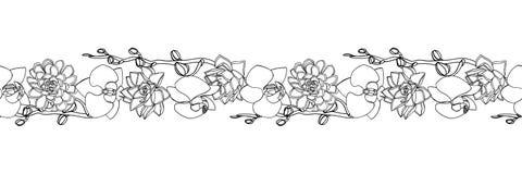 Handgezogene Gekritzelart saftig und Orchideenblumen nahtlose Bürste, endlose Grenze lizenzfreie abbildung
