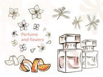Handgezogene Illustrationen - Parfümflasche und Blumen stock abbildung