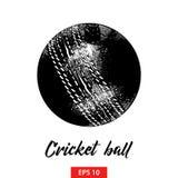 Handgezogene Skizze des Kricketballs im Schwarzen lokalisiert auf weißem Hintergrund Ausführliche Weinleseradierungs-Artzeichnung vektor abbildung