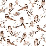Handgezogenes nahtloses Muster für Schönheitssalon mit Frisurnwerkzeugen lizenzfreie stockbilder