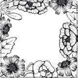 Handgezogenes Schwarzweiss-Tinten-Blatt-und Blumen-Hintergrund-Runden-Feld vektor abbildung
