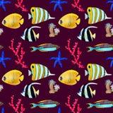 Handgezogenes seemless Muster im Aquarellseeweltnatürlichen Element Korallen fischen auf dunkelrotem Hintergrund vektor abbildung