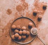 Handgjord chokladtryffel p? en platta M?rka chokladgodisar i kakaopulver p? en m?rk brun bakgrund Plan orientering arkivbilder
