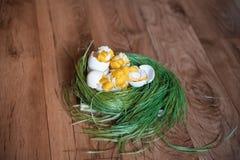 Handgjord höna i skal Påskdekor av fågelungar och vårgräs Stack hönor på gräset royaltyfri foto
