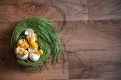 Handgjord höna i skal Påskdekor av fågelungar och vårgräs Stack hönor på gräset fotografering för bildbyråer