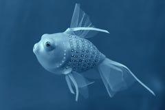 Handgjord leksakfisk Royaltyfri Foto