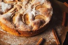 handgjord pie för äpple royaltyfria bilder