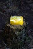 handgjord tvål Arkivbilder