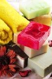 Handgjord tvål med bad- och brunnsorttillbehör Arkivbild