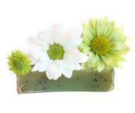 handgjord växt- naturlig tvål Fotografering för Bildbyråer