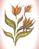 Handgjord vattenfärg som målar den blom- illustrationen Fotografering för Bildbyråer