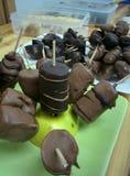 Handgjorda chokladfrukter fotografering för bildbyråer
