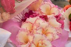 Handgjorda dekorativa pappers- blommor Royaltyfri Bild