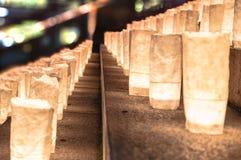 Handgjorda japanska rispapperlyktor som exponerar momenten av Royaltyfri Bild
