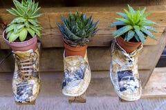 Handgjorda skor på skärm i Montepulciano Italien Royaltyfri Bild